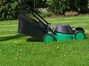 5 sprawdzonych sposobów na to jak uBatwi_ sobie prac_ w ogrodzie2