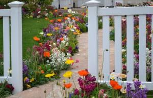 Jak tanimi sposobami odświeżyć przestrzeń ogrodu 2