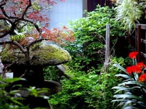Jak zaaranżować ogród w stylu japońskim 2